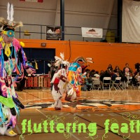 Tiny Tot Powwow Men: March 1st and 2nd