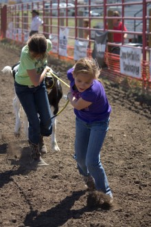 little britches calf race kelby Hayne and Kristen Schekske