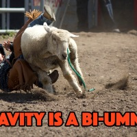 Little Britches Rodeo: June 7th and 8th