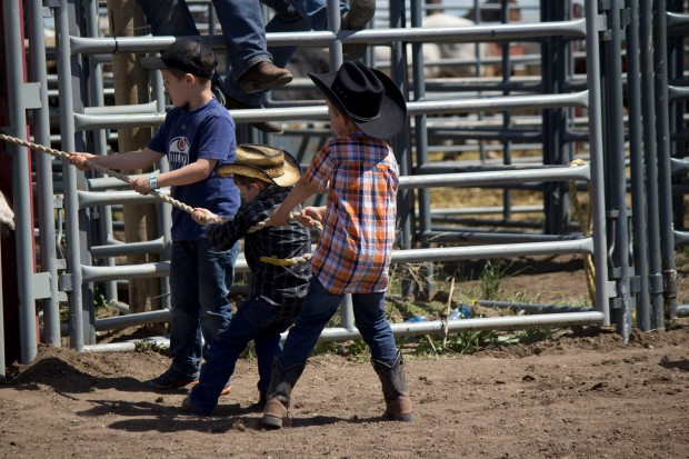 little britches Wild ram race waiting