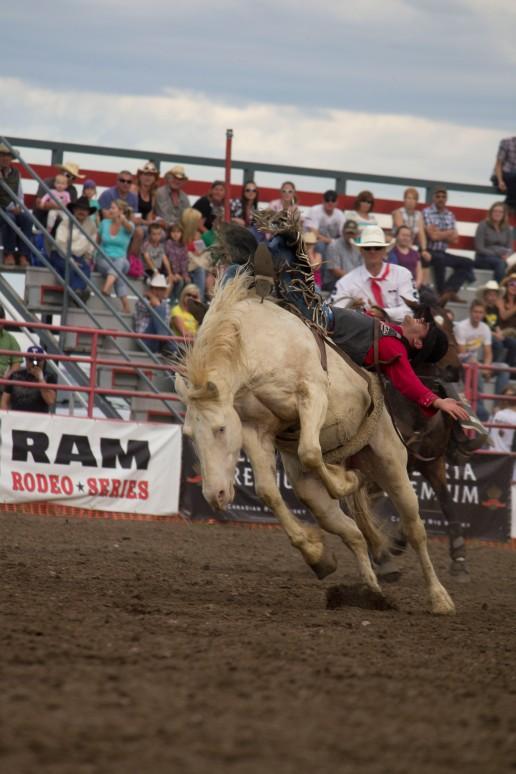 Rodeo 49 Luke Creasy