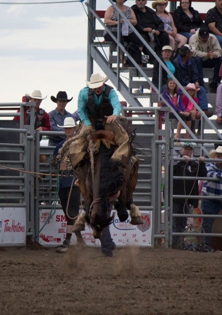 Rodeo- Saddle Bronc 20