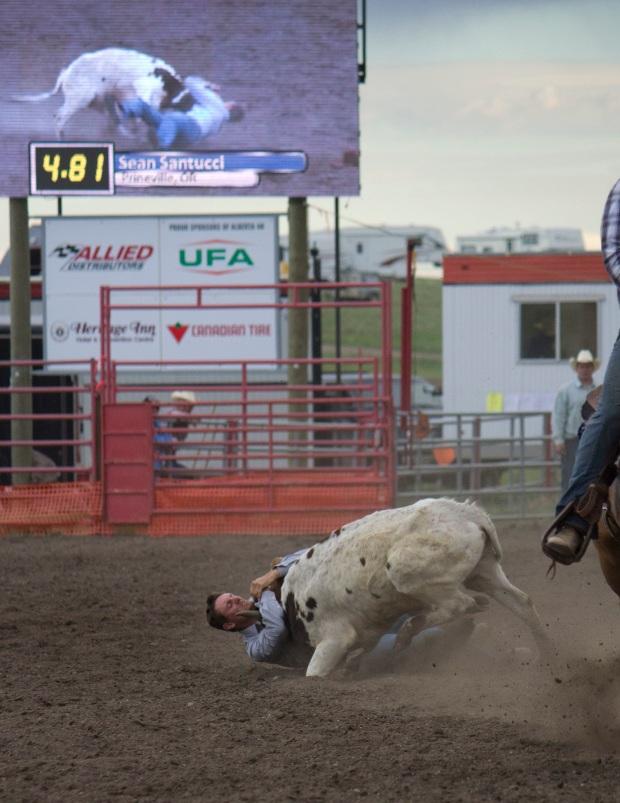 Rodeo- Wild Bronc 17