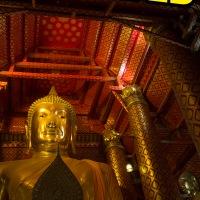 Wat Phanan Choeng: Ayutthaya