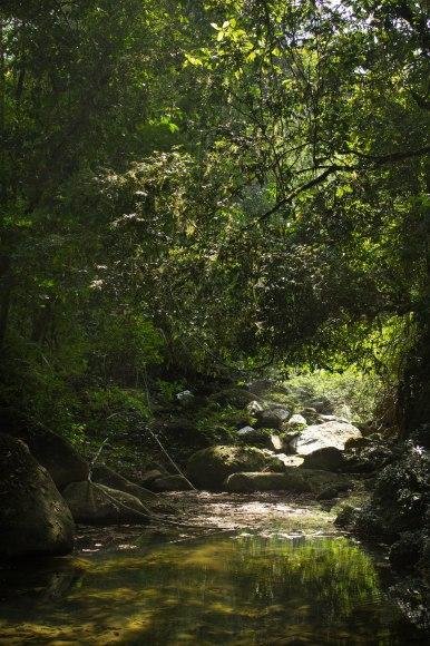 Khao Sok Hike 6