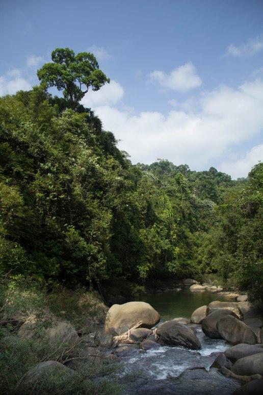 Khao Sok Hike 8