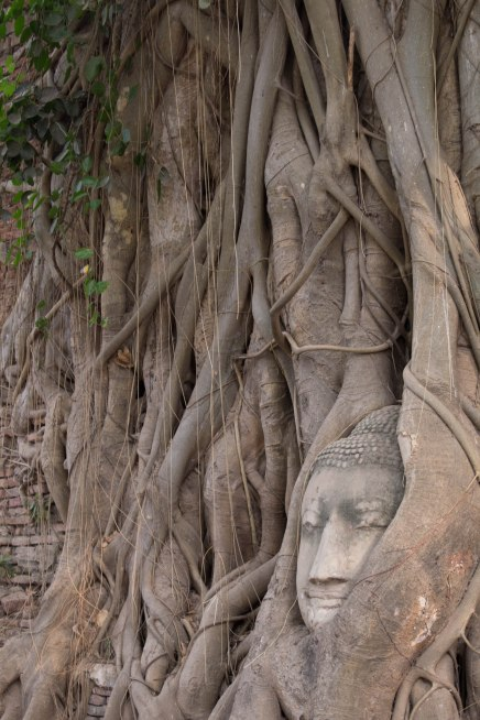 Ayutthaya with Burmese-19