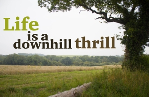 Lisa hill title