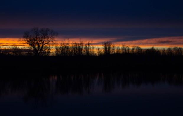 Alberta Sunsets-1