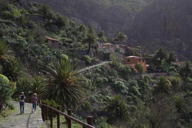 Tenerife 2014 Xmas-31