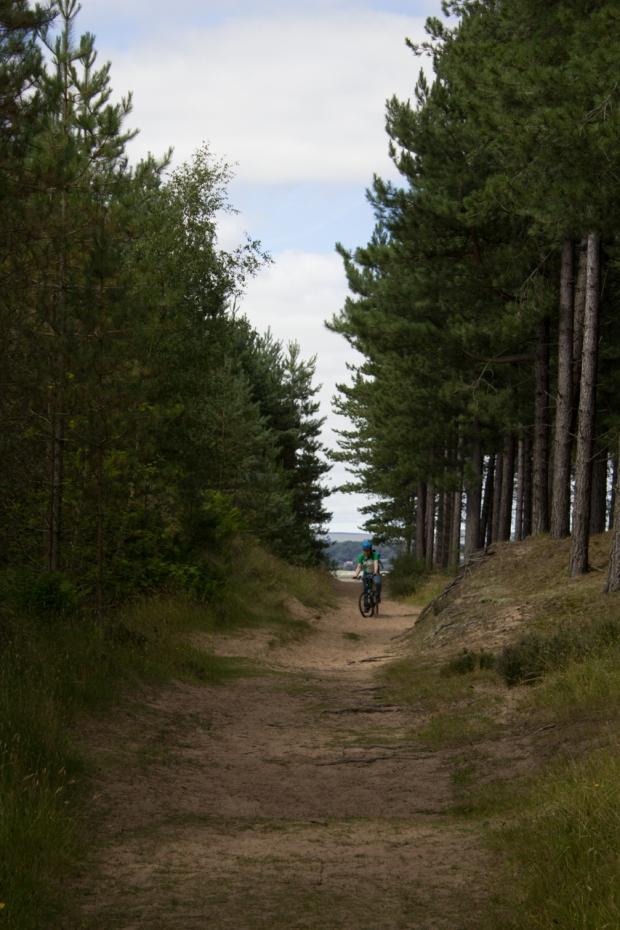 Tentsmuir Forest Bk-18